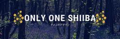 OnlyOneShiiba