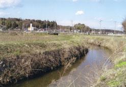 西念寺の南方から東に流れる稲田川。やがて涸沼川に合流し、小鶴荘に至ります。