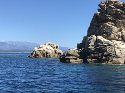 Plongée Nature îles cerbicales