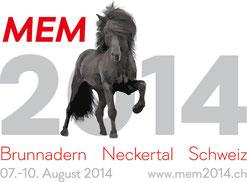 cliquez sur l'image pour visiter le site des MEM 2014