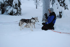 "De Musher met twee ""sterren"""