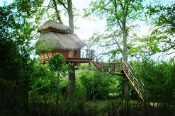 Cabane familiale dans les arbres Le Crotoy