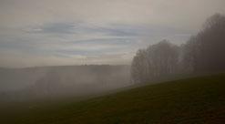 Nebel,mystisch,feld,wiese,agrar,landwirtschaft,sächsische schweiz,elbsandsteingebirge,tafelberge,herbst,winter,wandern,aktiv,freizeit,urlaub,wald,landschaft,photography,germany,nature,hikking,landscape,mystic,scenery