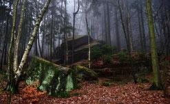Gespenstischer Wald am Pfaffenstein