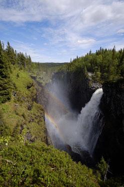 Der Hällingsåfallet - ein beeindruckender Wasserfall