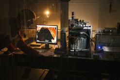 Für eine schnelle Krebs-Diagnostik: Tobias Meyer-Zedler vom Leibniz-IPHT erforscht laserbasierte, multimodale Bildgebungsverfahren, um Biomoleküle in Zellen, Geweben und Organen darzustellen. // Foto: Sven Döring/ Leibniz-IPHT