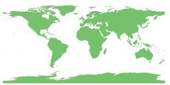 Pays d'origine, Huile essentielle