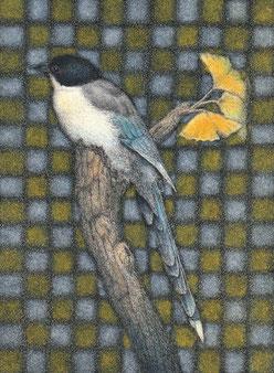 「オナガと銀杏」 細密ペン画 150×110㎜