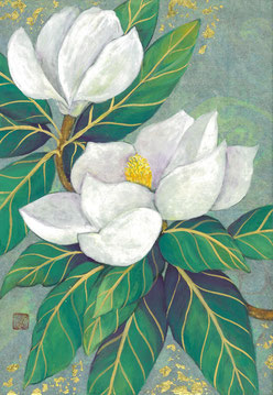 「泰山木―花巡り」SM 紙本着彩