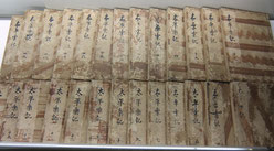 大坂の陣いた小説「厭蝕(えんしょく)太平楽記」