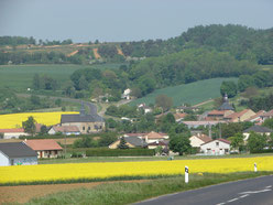 Moulins et ses deux clochers au temps des colzas en fleurs