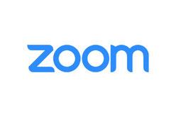 zoom 婚活 オンライン