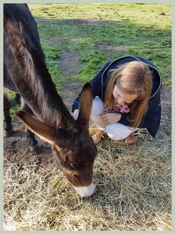 Eerste kennismaking met de ezel..