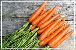 Karottenfakten