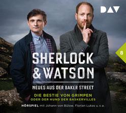 CD Cover Sherlock & Watson Fall 8