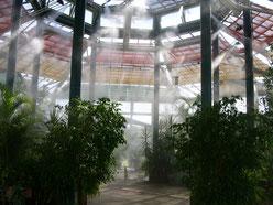 Fog système et régulation humidité
