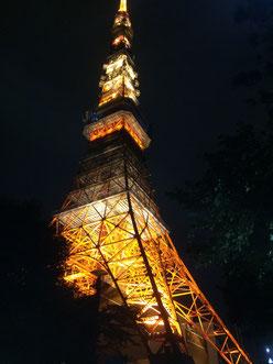 真央の夜景画像