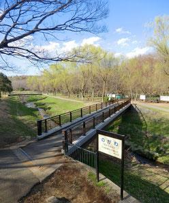 ●自然観察センターは、野川を見下ろす眺めの良い場所にあります