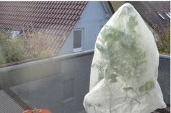 Verbisschutz und Kälteschutz