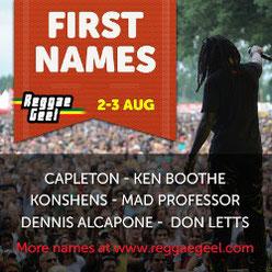 reggae festival belgique geel 2013