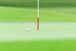 サッカー 野球 体操 ゴルフ撮影