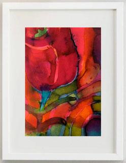 Tulipano, 2020, Acquerello, Inchiostro su carta, 20 X 30