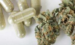 suppositoires a base de cannabis