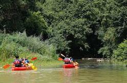 Lassenat écomaison d'Hôtes en Gascogne, dans le Gers, région occitanie, c'est trois chambres d'hôtes de charme avec table d'hôtes et piscine écologique, plus des activités d'écotourisme : canoë, randonnées, vélos à assistance électrique.