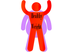 100% free healthy weight programs