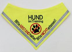 Hund im Training, Angsthund, Halstuch