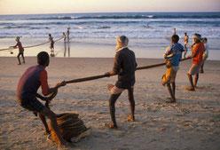 Retour de pêche Orissa, Inde - Philippe Lissac