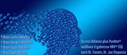 Access    Anwendung  Innate Consciousness