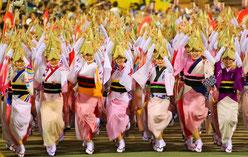 徳島市の阿波踊り