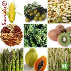 Санрайдер витамины