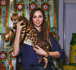 Владелец котика Чумасова Е.А.  , г.Москва