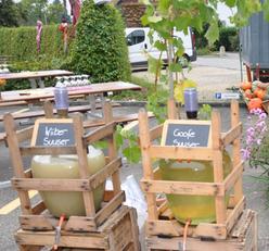 Frischen Sauser gibt's ab unserem Sauserfest vom 22. September