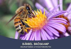 Heilpraktiker - Rheine -  Apitherapie - Bienenheilkunde - Honigmassage - Behandlung mit Bienenprodukten