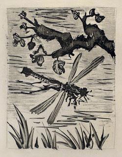La libellule - 1936 - Pablo PICASSO