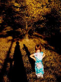 Ombre et lumière dans la nature