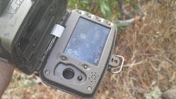 La pantalla ayuda a apuntar la cámara al estar mirando hacia el frente