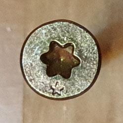 Kegeliger Schraubenkopf einer Holzschraube mit Torx-Antrieb