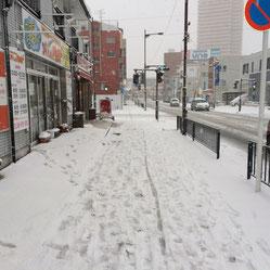 大雪です(´・_・`)