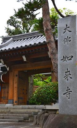 養玉院如来寺の山門写真