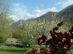 Vistas a la montaña en Oloron Santa Maria