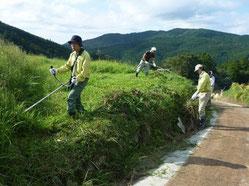 棚田の除草活動の様子(2)