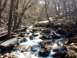 L'eau de la rivière coule entre les pierres. il faut sauter sur les pierres pour traverser et ne pas mettre le s pieds dans l'eau