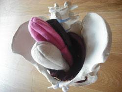 Beckenboden Modell aus Wollfilz mit Becken kompatibel
