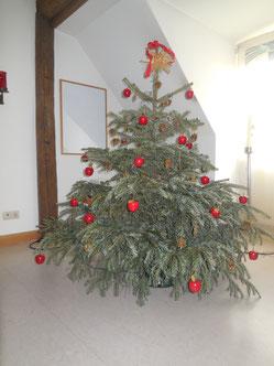 Die roten Kugeln/Äpfel am Weihnachtsbaum erinnern an den Apfel der Paradies-Erzählung.