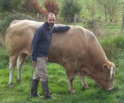 Blonde d'Aquitaine 79 Mauléon qualité produits fermiers