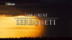 Il grande Serengeti